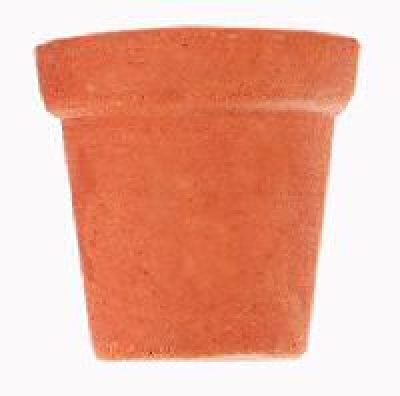 a terra cotta flower pot